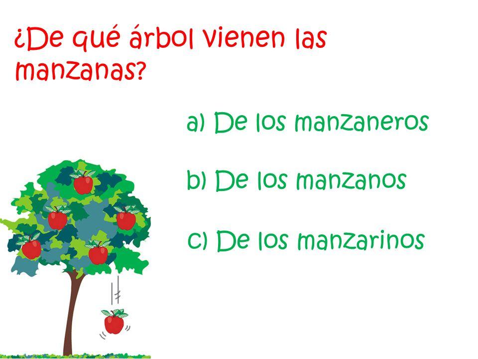 De camino a casa de su amigo, Tigger descubrió multitud de frutos de diferentes colores y formas, pero… ¿De qué árbol viene cada fruto? Empezar