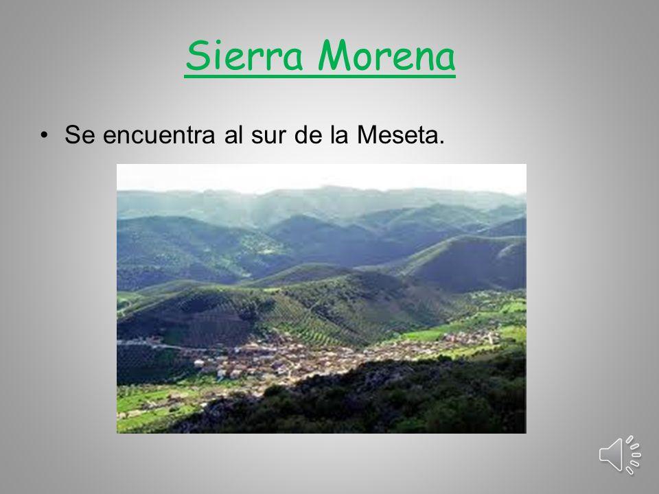 Cabeza de Manzaneda Se encuentra en el Macizo Galaico y mide 1.778 metros.
