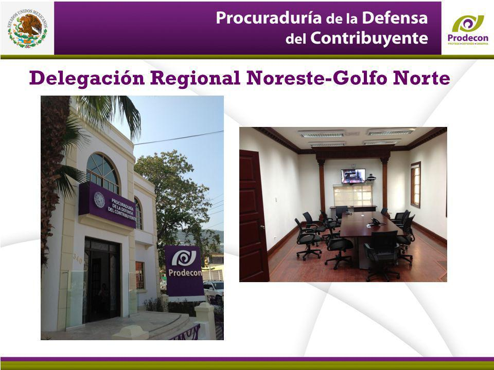 Delegación Regional Noreste-Golfo Norte