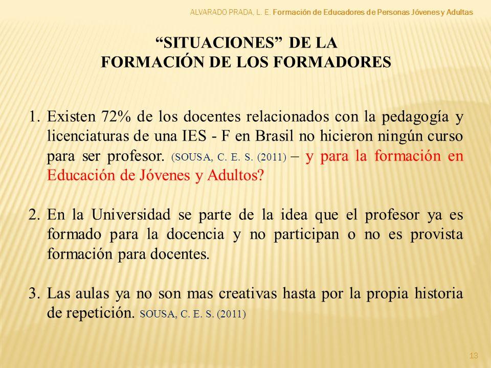 13 SITUACIONES DE LA FORMACIÓN DE LOS FORMADORES 1.Existen 72% de los docentes relacionados con la pedagogía y licenciaturas de una IES - F en Brasil