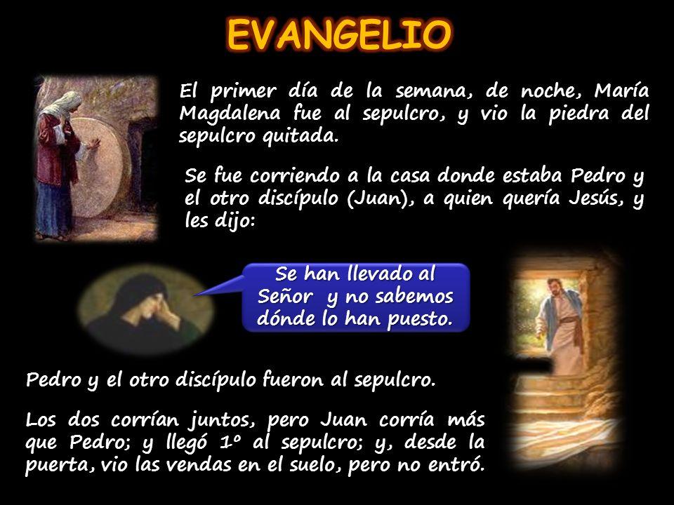 El primer día de la semana, de noche, María Magdalena fue al sepulcro, y vio la piedra del sepulcro quitada.