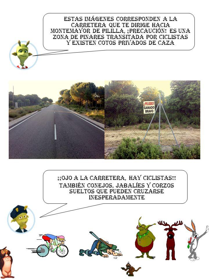 Estas imágenes corresponden a La carretera que te dirige hacia montemayor de pililla, ¡PRECAUCIÓN.