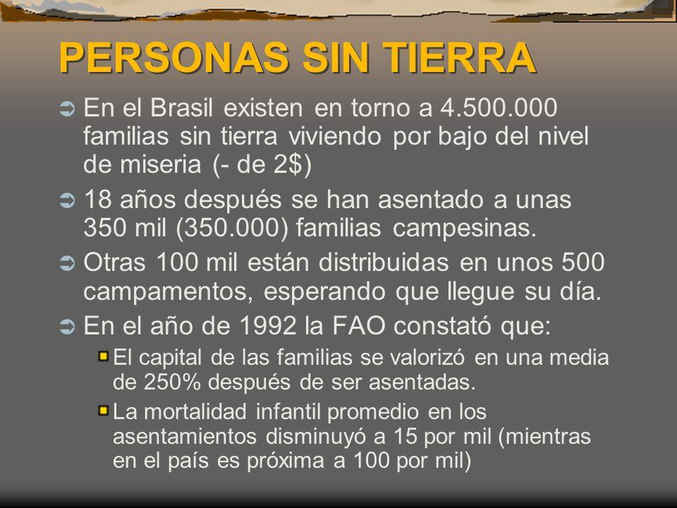 PERSONAS SIN TIERRA PERSONAS SIN TIERRA En el Brasil existen en torno a 4.500.000 familias sin tierra viviendo por bajo del nivel de miseria (- de 2$) 18 años después se han asentado a unas 350 mil (350.000) familias campesinas.