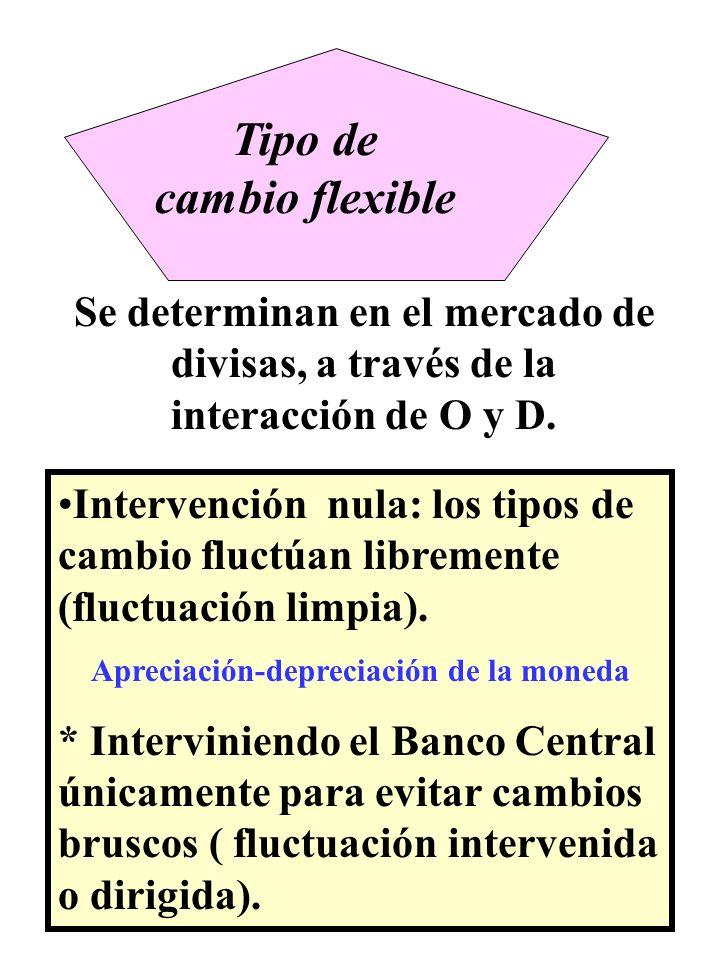 Se determinan en el mercado de divisas, a través de la interacción de O y D. Intervención nula: los tipos de cambio fluctúan libremente (fluctuación l