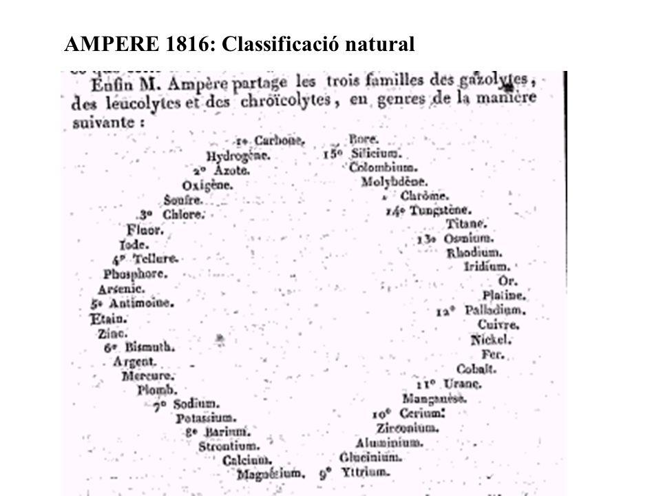 AMPERE 1816: Classificació natural