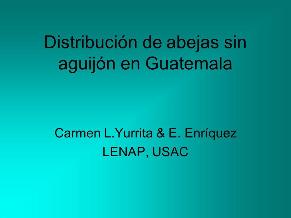Distribución de abejas sin aguijón en Guatemala Carmen L.Yurrita & E. Enríquez LENAP, USAC