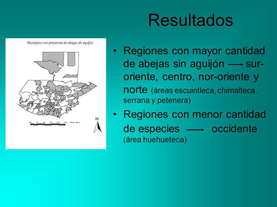 Resultados Regiones con mayor cantidad de abejas sin aguijón sur- oriente, centro, nor-oriente y norte (áreas escuintleca, chimalteca, serrana y peten