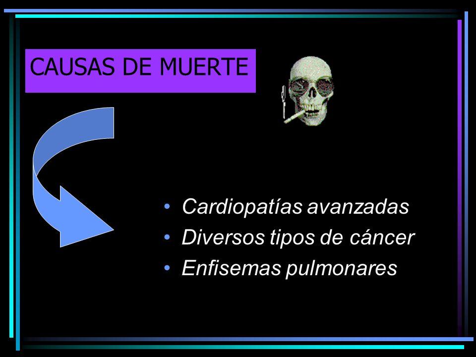 CAUSAS DE MUERTE Cardiopatías avanzadas Diversos tipos de cáncer Enfisemas pulmonares