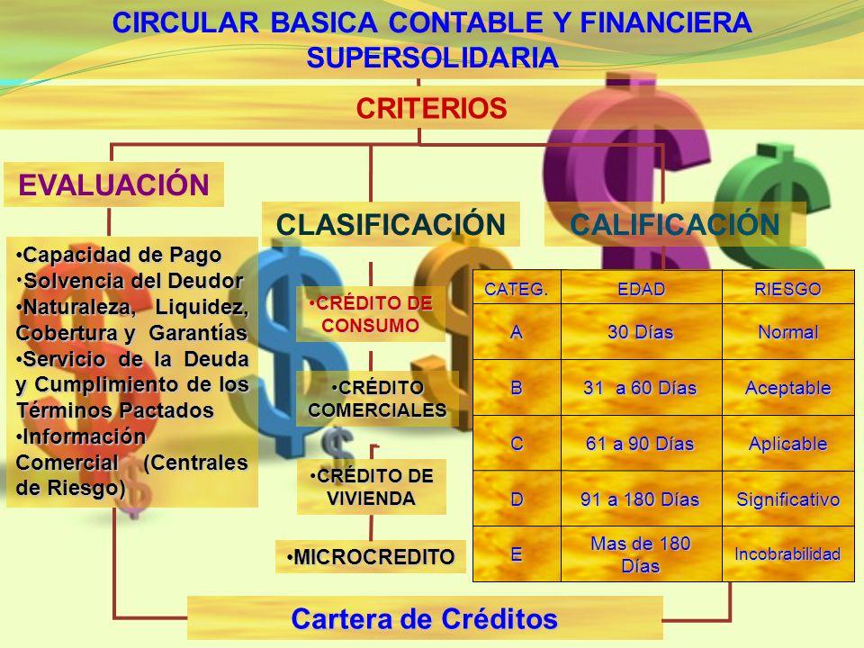 CIRCULAR BASICA CONTABLE Y FINANCIERA SUPERSOLIDARIA CRITERIOS Cartera de Créditos Capacidad de Pago Capacidad de Pago Solvencia del Deudor Solvencia