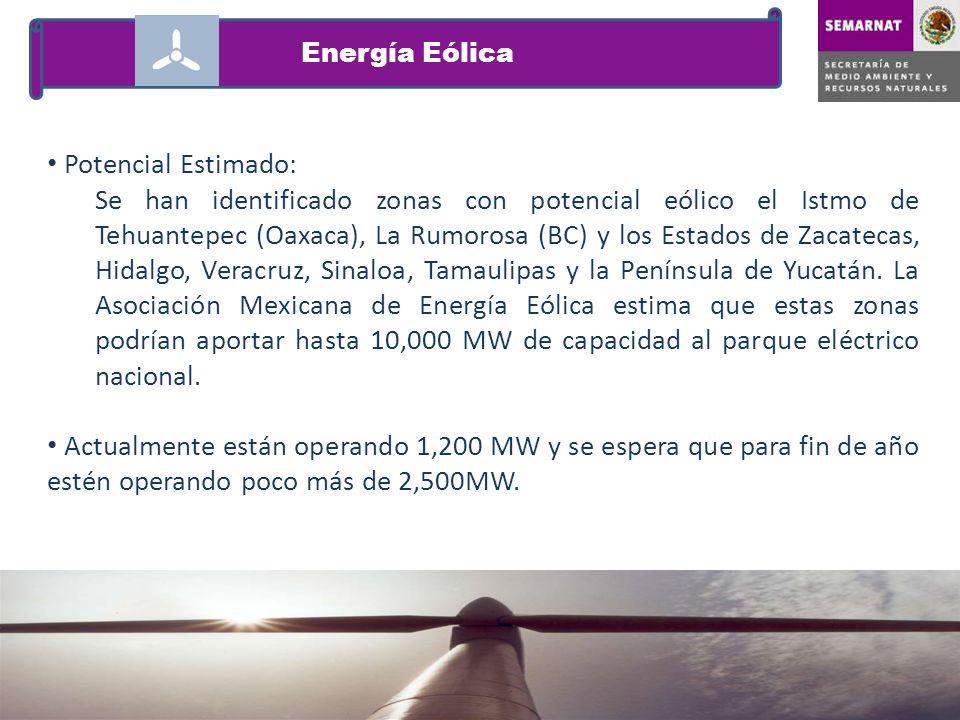 Potencial Estimado: Se han identificado zonas con potencial eólico el Istmo de Tehuantepec (Oaxaca), La Rumorosa (BC) y los Estados de Zacatecas, Hida