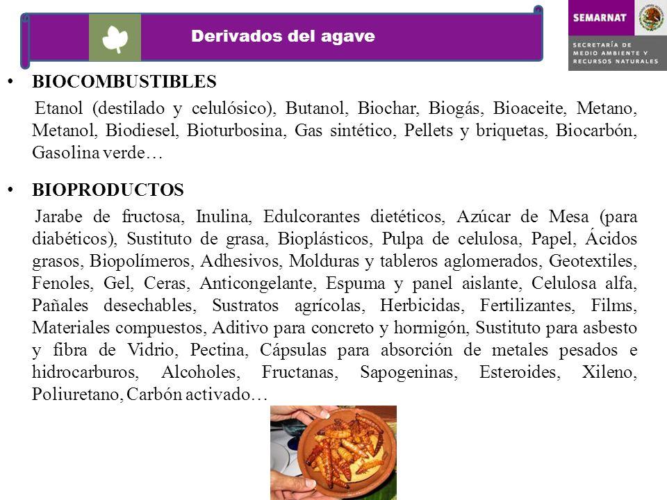 BIOCOMBUSTIBLES Etanol (destilado y celulósico), Butanol, Biochar, Biogás, Bioaceite, Metano, Metanol, Biodiesel, Bioturbosina, Gas sintético, Pellets
