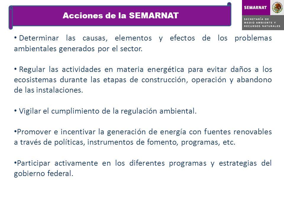 Determinar las causas, elementos y efectos de los problemas ambientales generados por el sector. Regular las actividades en materia energética para ev