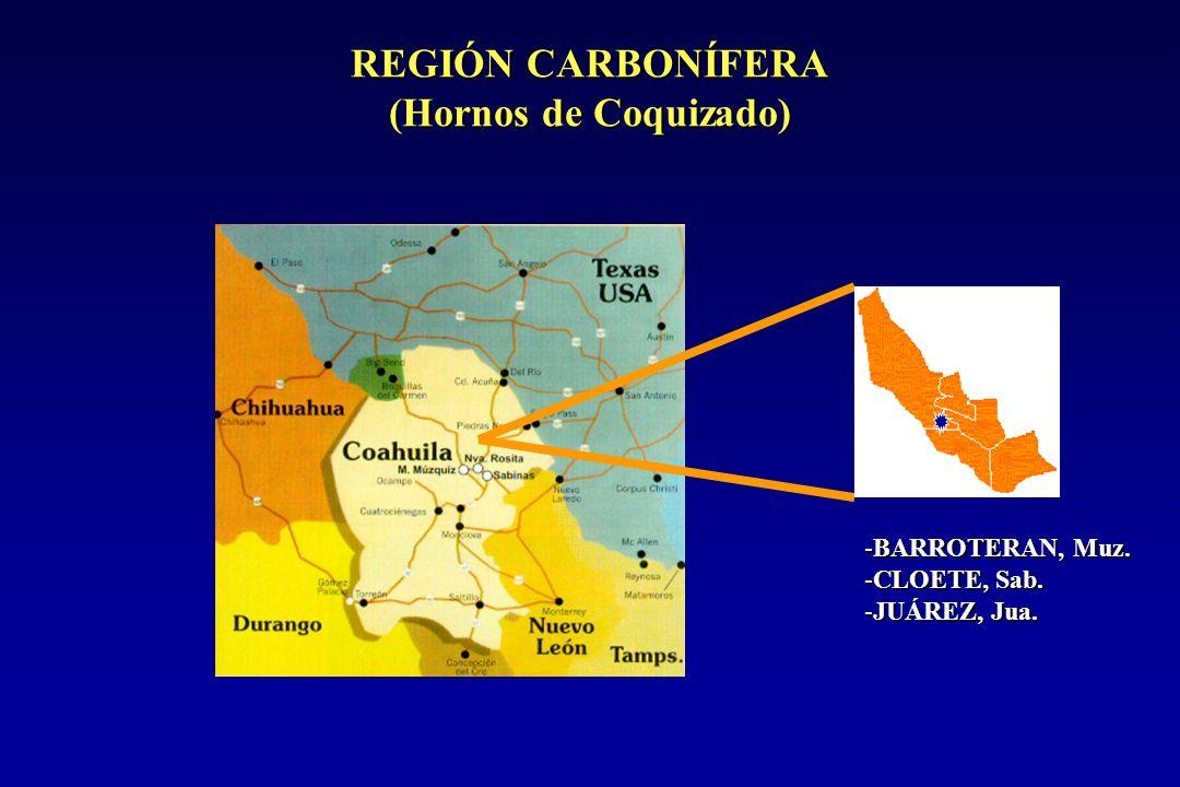 REGIÓN CARBONÍFERA (Hornos de Coquizado) -BARROTERAN, Muz. -CLOETE, Sab. -JUÁREZ, Jua.