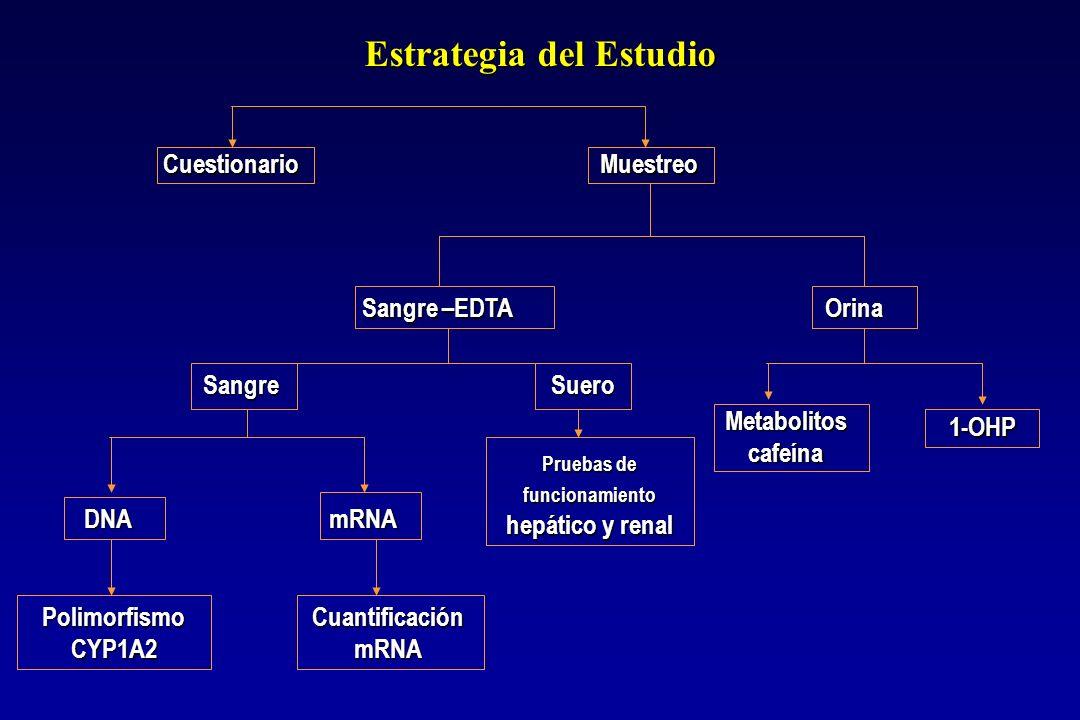 Estrategia del Estudio Estrategia del Estudio Cuestionario Muestreo Cuestionario Muestreo Sangre –EDTA Sangre –EDTA Sangre Suero Sangre Suero DNA mRNA