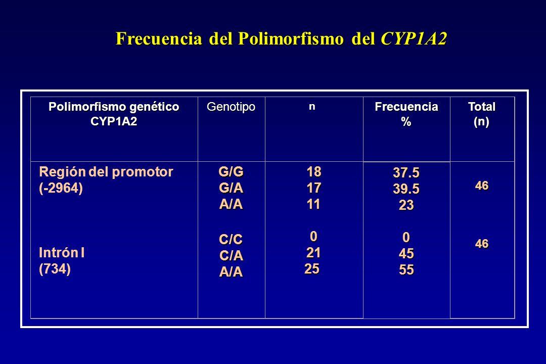 Frecuencia del Polimorfismo del CYP1A2 Polimorfismo genético CYP1A2 Genotipon Frecuencia%Total(n) Región del promotor (-2964) Intrón I (734)G/GG/AA/AC/CC/AA/A181711 02125 37.539.523 04555 46 46