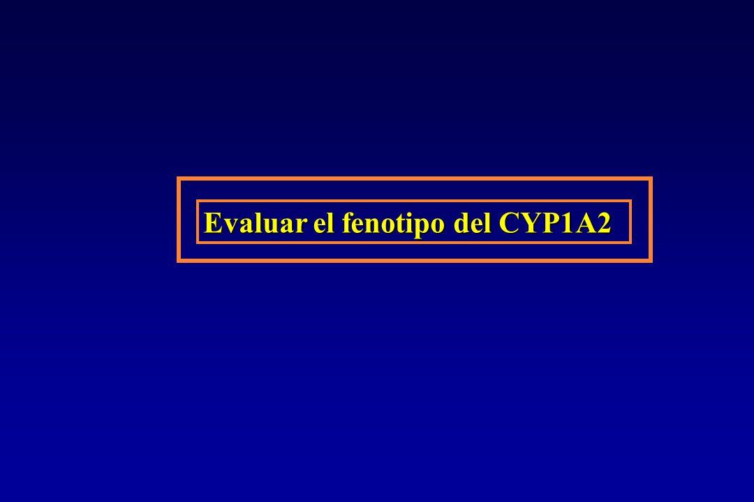 Evaluar el fenotipo del CYP1A2