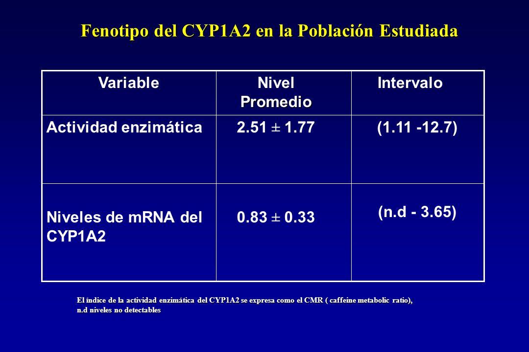 El índice de la actividad enzimática del CYP1A2 se expresa como el CMR ( caffeine metabolic ratio), n.d niveles no detectables (1.11 -12.7) (n.d - 3.65) 2.51 ± 1.77 0.83 ± 0.33 Actividad enzimática Niveles de mRNA del CYP1A2 Intervalo Promedio Nivel Promedio Variable Fenotipo del CYP1A2 en la Población Estudiada