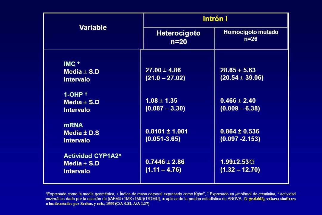 IMC + Media ± S.D Intervalo 1-OHP Media ± S.D Intervalo mRNA Media ± D.S Intervalo Actividad CYP1A2 Media ± S.D Intervalo (p<0.001), valores similares a los detectados por Sachse, y cols., 1999 (C/A 0.82, A/A 1.37) *Expresado como la media geométrica, + Índice de masa corporal expresado como Kg/m 2, Expresado en mol/mol de creatinina, actividad enzimática dada por la relación de [(AFMU+1MX+1MU)/17DMU], aplicando la prueba estadística de ANOVA, (p<0.001), valores similares a los detectados por Sachse, y cols., 1999 (C/A 0.82, A/A 1.37) Variable Intrón I Heterocigoto n=20 Homocigoto mutado n=26 27.00 ± 4.86 (21.0 – 27.02) 1.08 ± 1.35 (0.087 – 3.30) 0.8101 ± 1.001 (0.051-3.65) 0.7446 ± 2.86 (1.11 – 4.76) 28.65 ± 5.63 (20.54 ± 39.06) 0.466 ± 2.40 (0.009 – 6.38) 0.864 ± 0.536 (0.097 -2.153) 1.99±2.53 (1.32 – 12.70)