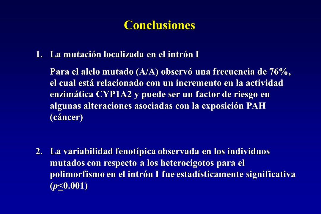 Conclusiones 1.La mutación localizada en el intrón I Para el alelo mutado (A/A) observó una frecuencia de 76%, el cual está relacionado con un incremento en la actividad enzimática CYP1A2 y puede ser un factor de riesgo en algunas alteraciones asociadas con la exposición PAH (cáncer) 2.