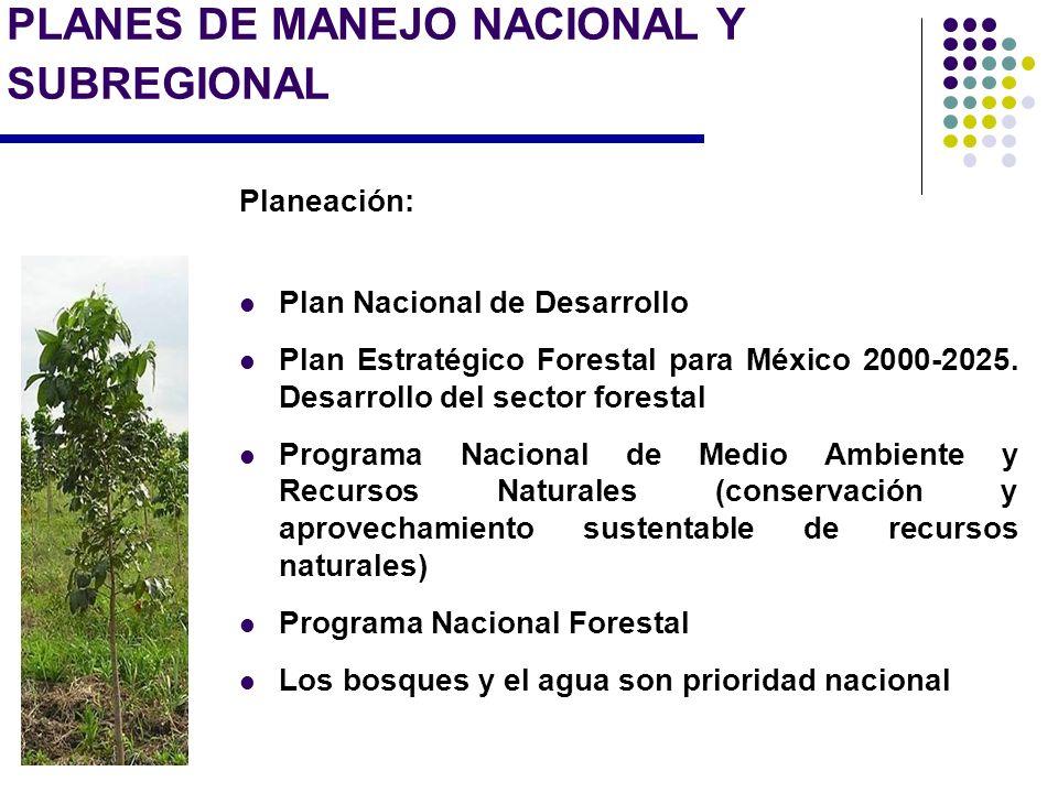 PLANES DE MANEJO NACIONAL Y SUBREGIONAL Planeación: Plan Nacional de Desarrollo Plan Estratégico Forestal para México 2000-2025. Desarrollo del sector
