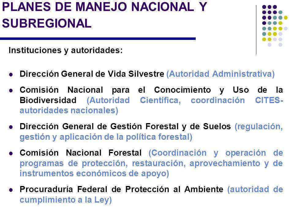 PLANES DE MANEJO NACIONAL Y SUBREGIONAL Instituciones y autoridades: Dirección General de Vida Silvestre (Autoridad Administrativa) Comisión Nacional
