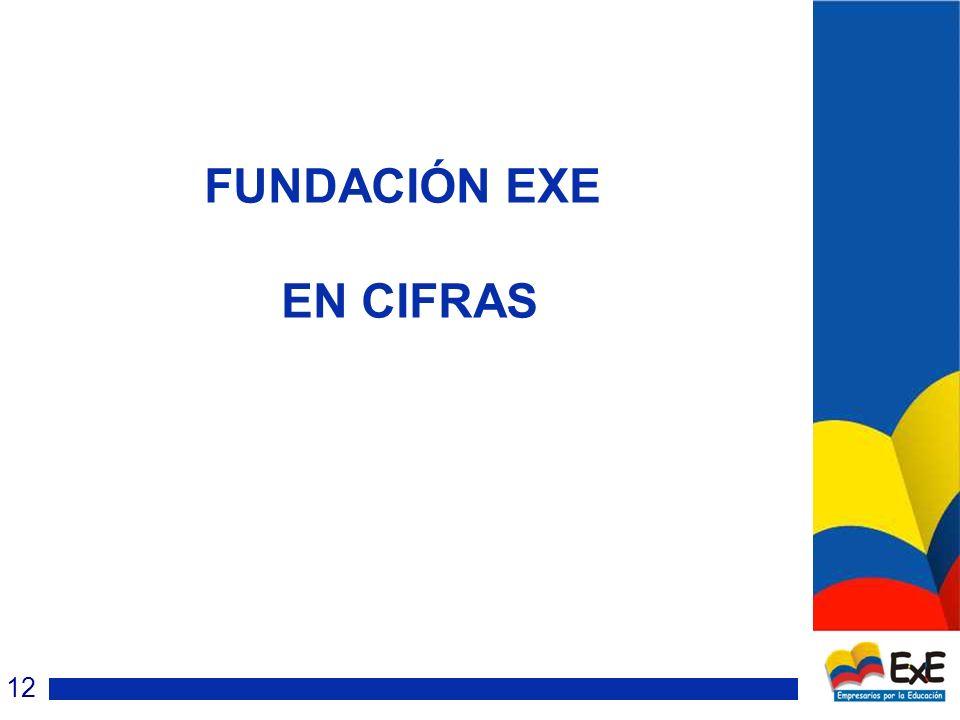 FUNDACIÓN EXE EN CIFRAS 12