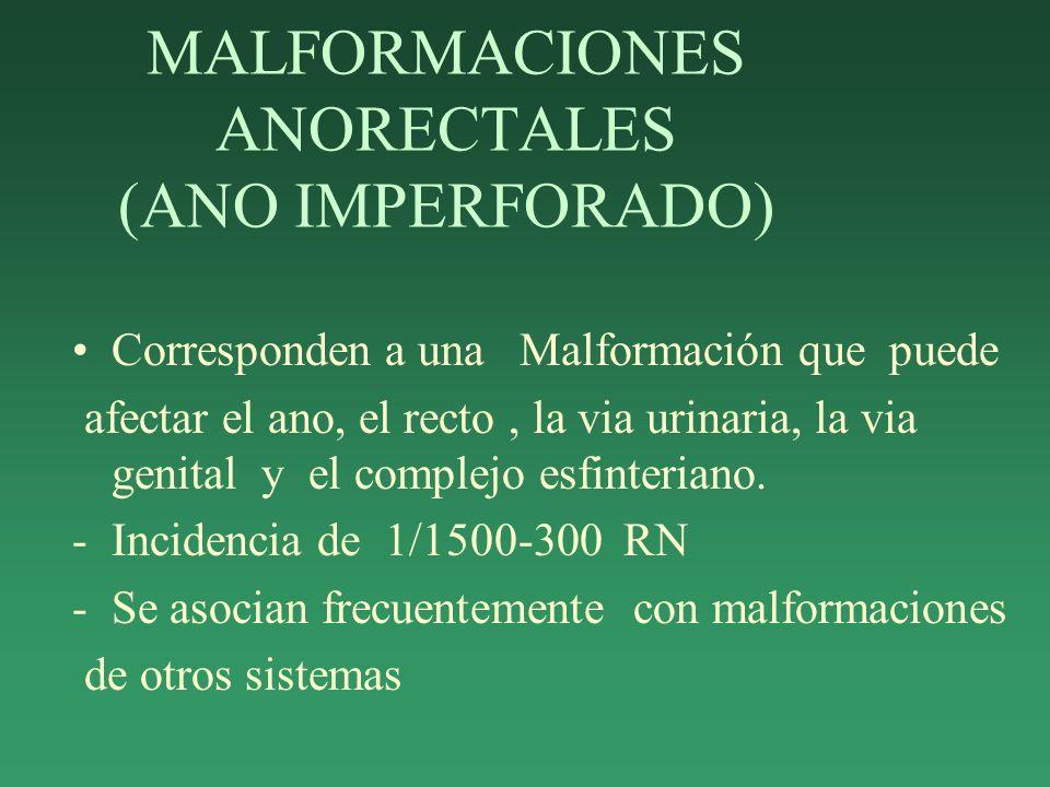 MALFORMACIONES ANORECTALES (ANO IMPERFORADO) Corresponden a una Malformación que puede afectar el ano, el recto, la via urinaria, la via genital y el complejo esfinteriano.