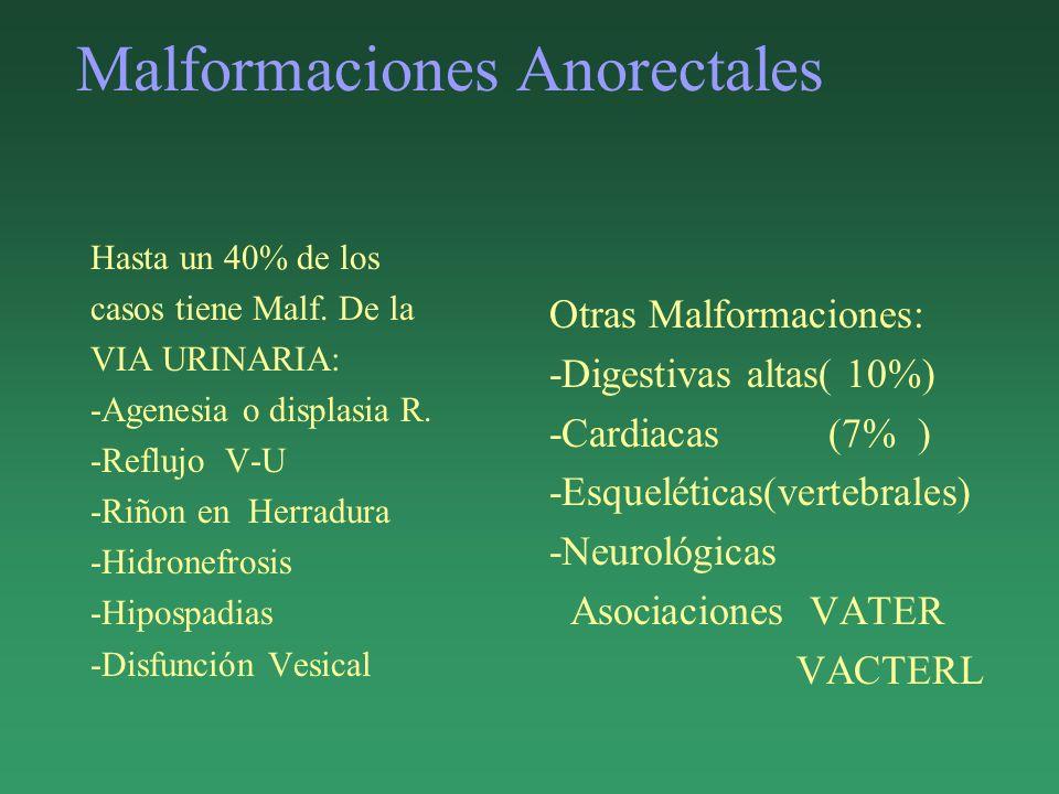 Malformaciones Anorectales Hasta un 40% de los casos tiene Malf. De la VIA URINARIA: -Agenesia o displasia R. -Reflujo V-U -Riñon en Herradura -Hidron