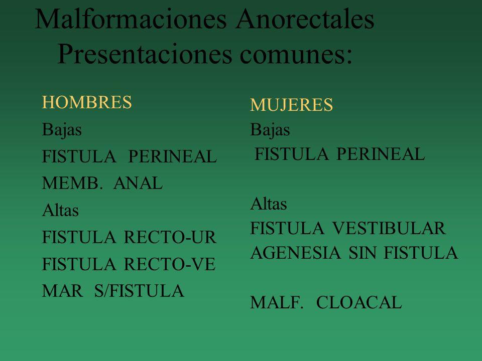 Malformaciones Anorectales Presentaciones comunes: HOMBRES Bajas FISTULA PERINEAL MEMB. ANAL Altas FISTULA RECTO-UR FISTULA RECTO-VE MAR S/FISTULA MUJ