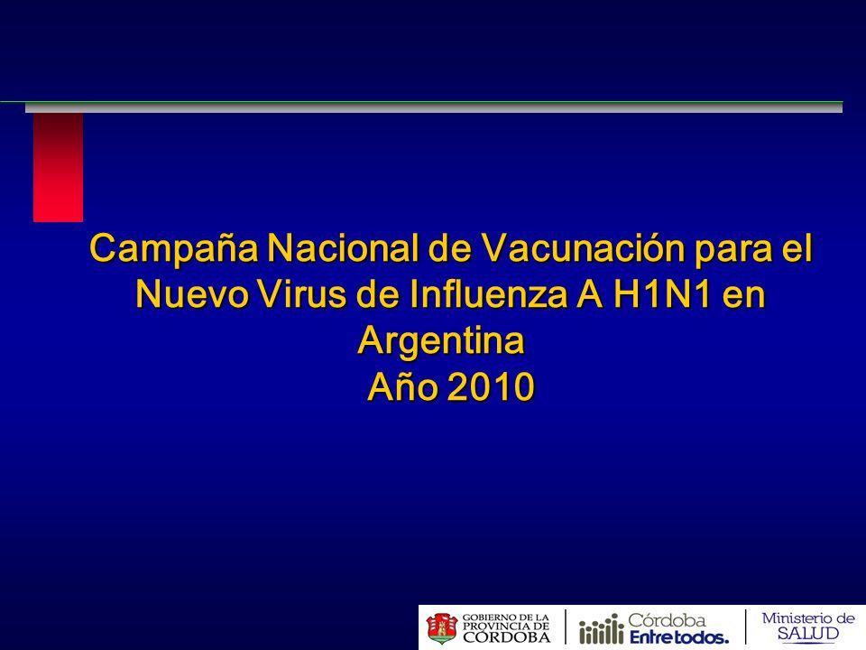 Campaña Nacional de Vacunación para el Nuevo Virus de Influenza A H1N1 en Argentina Argentina Año 2010