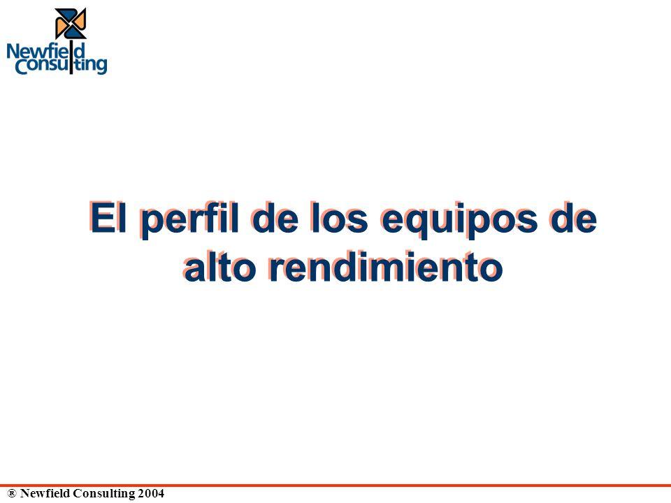 ® Newfield Consulting 2004 El perfil de los equipos de alto rendimiento