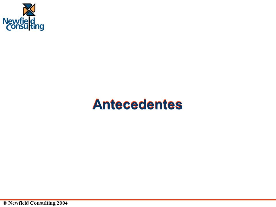 ® Newfield Consulting 2004 Antecedentes