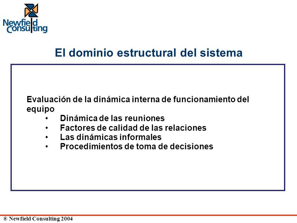 ® Newfield Consulting 2004 El dominio estructural del sistema Evaluación de la dinámica interna de funcionamiento del equipo Dinámica de las reuniones