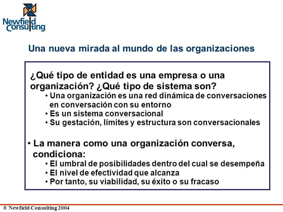 ® Newfield Consulting 2004 Una nueva mirada al mundo de las organizaciones ¿Qué tipo de entidad es una empresa o una organización? ¿Qué tipo de sistem