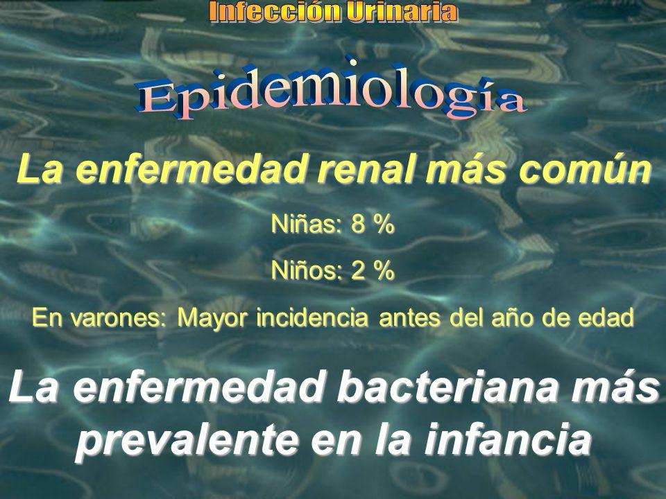 La enfermedad renal más común Niñas: 8 % Niños: 2 % En varones: Mayor incidencia antes del año de edad La enfermedad bacteriana más prevalente en la i