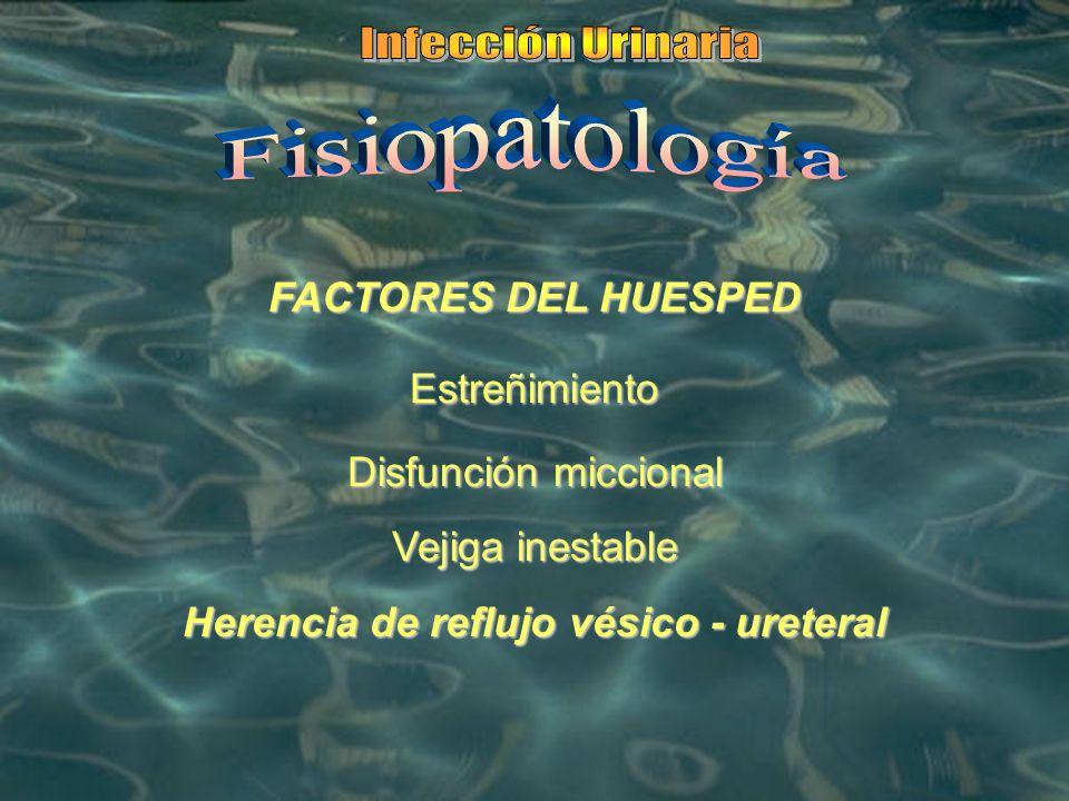FACTORES DEL HUESPED Estreñimiento Disfunción miccional Vejiga inestable Herencia de reflujo vésico - ureteral