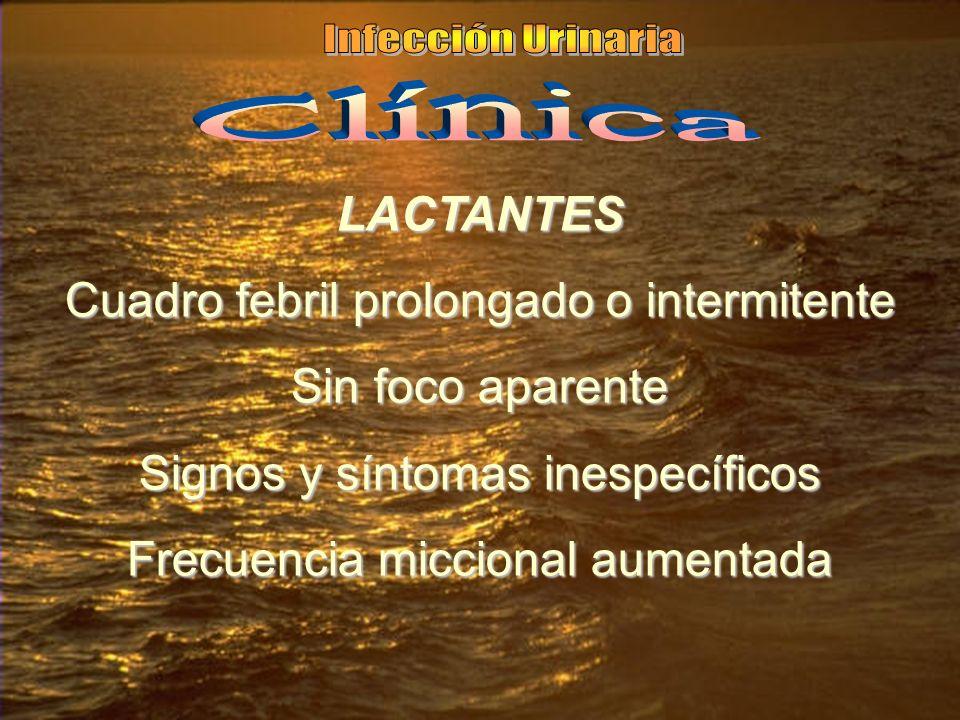 LACTANTES Cuadro febril prolongado o intermitente Sin foco aparente Signos y síntomas inespecíficos Frecuencia miccional aumentada