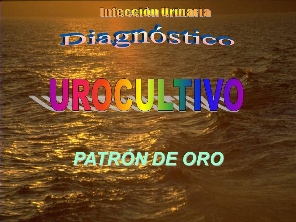 PATRÓN DE ORO