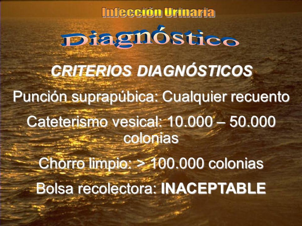 CRITERIOS DIAGNÓSTICOS Punción suprapúbica: Cualquier recuento Cateterismo vesical: 10.000 – 50.000 colonias Chorro limpio: > 100.000 colonias Bolsa recolectora: INACEPTABLE