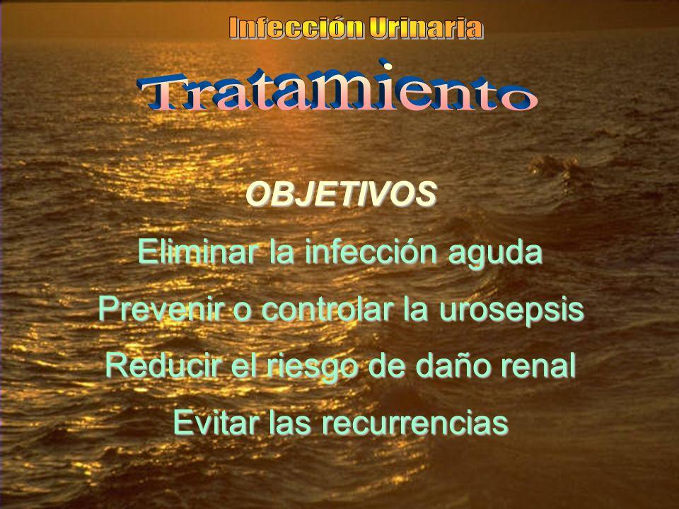 OBJETIVOS Eliminar la infección aguda Prevenir o controlar la urosepsis Reducir el riesgo de daño renal Evitar las recurrencias