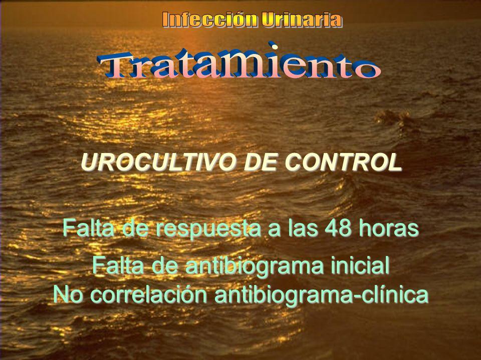 UROCULTIVO DE CONTROL Falta de respuesta a las 48 horas Falta de antibiograma inicial No correlación antibiograma-clínica