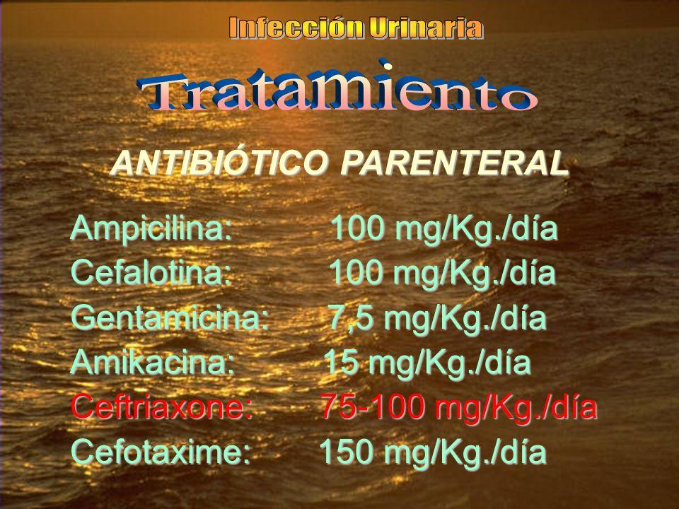 ANTIBIÓTICO PARENTERAL Ampicilina: 100 mg/Kg./día Cefalotina: 100 mg/Kg./día Gentamicina: 7,5 mg/Kg./día Amikacina: 15 mg/Kg./día Ceftriaxone: 75-100 mg/Kg./día Cefotaxime: 150 mg/Kg./día