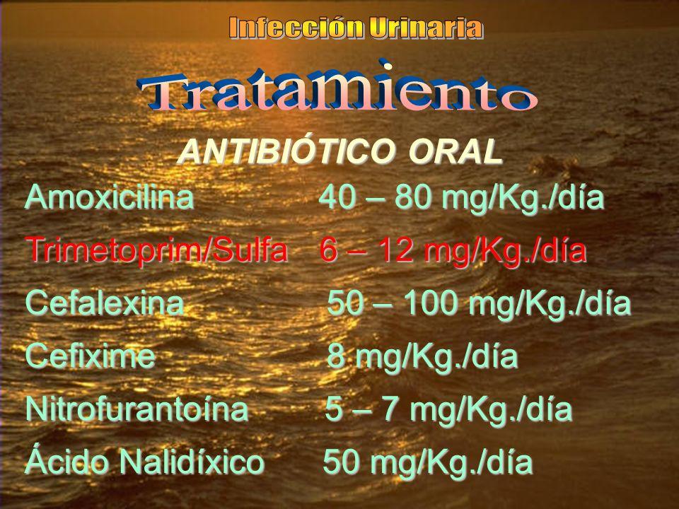 ANTIBIÓTICO ORAL Amoxicilina 40 – 80 mg/Kg./día Trimetoprim/Sulfa 6 – 12 mg/Kg./día Cefalexina 50 – 100 mg/Kg./día Cefixime 8 mg/Kg./día Nitrofurantoí