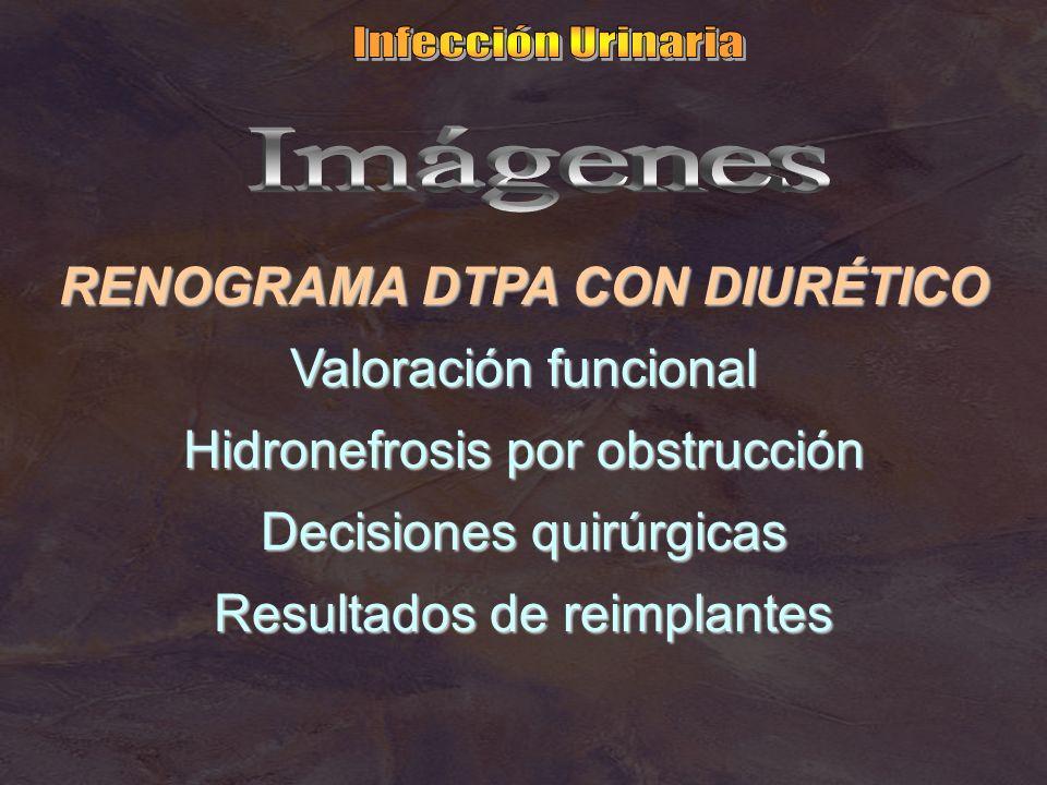 RENOGRAMA DTPA CON DIURÉTICO Valoración funcional Hidronefrosis por obstrucción Decisiones quirúrgicas Resultados de reimplantes