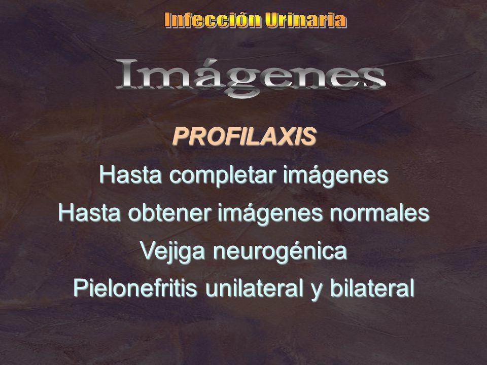 PROFILAXIS Hasta completar imágenes Hasta obtener imágenes normales Vejiga neurogénica Pielonefritis unilateral y bilateral