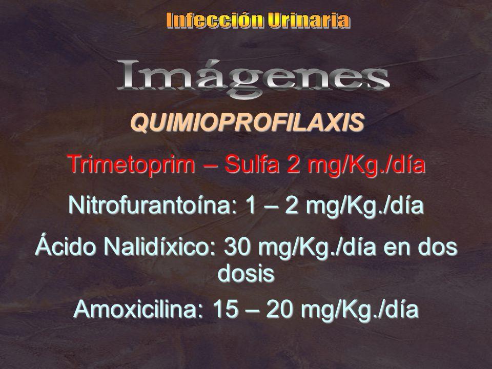 QUIMIOPROFILAXIS Trimetoprim – Sulfa 2 mg/Kg./día Nitrofurantoína: 1 – 2 mg/Kg./día Ácido Nalidíxico: 30 mg/Kg./día en dos dosis Amoxicilina: 15 – 20