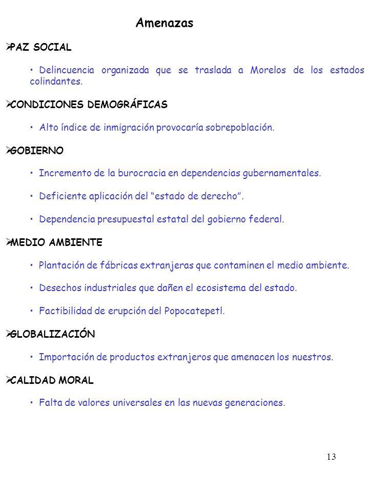 13 Amenazas PAZ SOCIAL Delincuencia organizada que se traslada a Morelos de los estados colindantes. CONDICIONES DEMOGRÁFICAS Alto índice de inmigraci