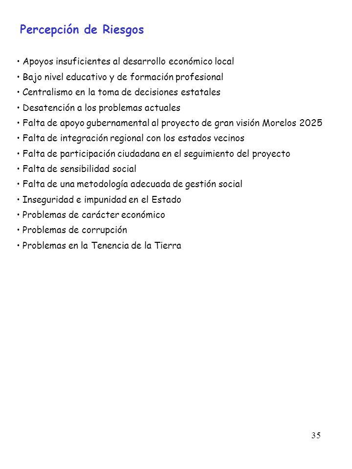 35 Percepción de Riesgos Apoyos insuficientes al desarrollo económico local Bajo nivel educativo y de formación profesional Centralismo en la toma de