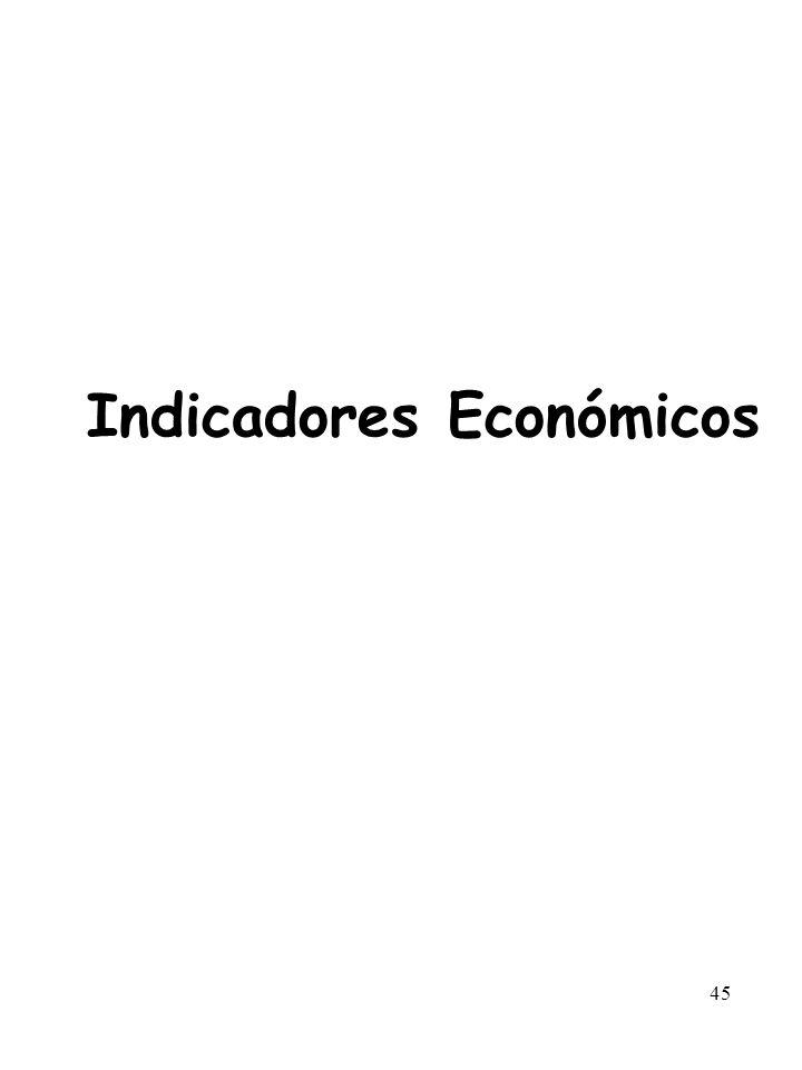 45 Indicadores Económicos
