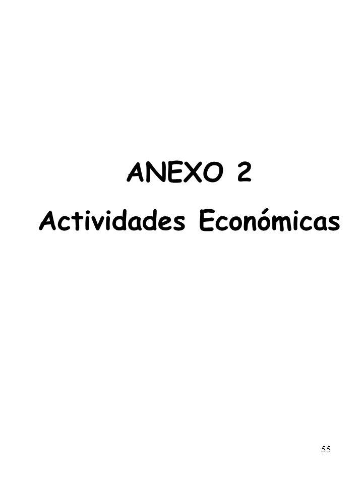 55 ANEXO 2 Actividades Económicas